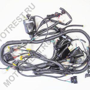 Коса электрическая, основная (с блоком предохранителей, модуль управления под капотом)